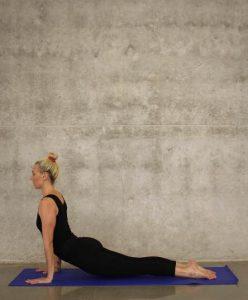 yoga-heraufschauende-hund